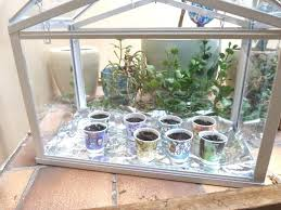 best mini greenhouse ideas designs and decors indoor diy with light