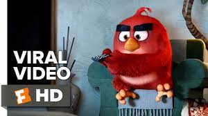 The Angry Birds Movie VIRAL VIDEO - AMC Video (2016) - Animated Movie HD -  YouTube