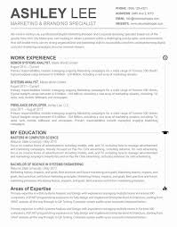 Resume Template For Mac Elegant Stunning Sample Resume For Apple