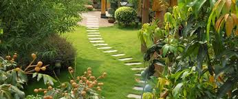 hire a gardener