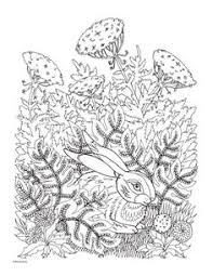 91 Best Coloring Bunnies Images Coloring Pages Coloring Books