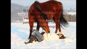 Traber Robby Bes Nur Ein Pferd Youtube