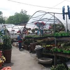nurseries gardening in great neck yelp