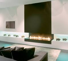 Fireplace  Amazing Ethanol Fireplaces Problems Images Home Design Ethanol Fireplaces