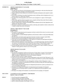 Credit Product Manager Resume Samples Velvet Jobs