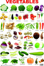 vegetables names list. Perfect List Vegetable List Inside Vegetables Names List H