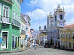 imagem de Pau Brasil Bahia n-3