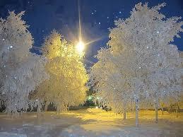 Image result for poze iarna