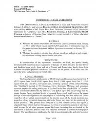 Commercial Lease Agreement Sample Impressive 48 Commercial Lease Agreement Examples PDF