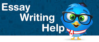 college essay help in get it done now ca edubirdie com essay help in has never been that affordable