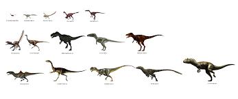 Dinosaur Sizes Comparison Chart Size Comparison Of Dinosaurs Carnivorous Theropods