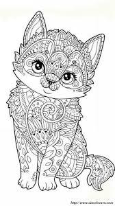 Colorare Per Adulti Disegno Un Piccolo Gatto