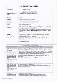 Diploma In Civil Engineering Resume Sample