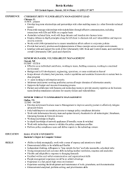 Management Resume Vulnerability Management Resume Samples Velvet Jobs 50