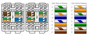 similiar cat wiring keywords cat6 patch panel wiring diagram photo album diagrams