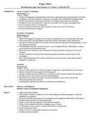 Waiter Resume Stunning Waiter Resume Samples Velvet Jobs In Resume Examples Waitress