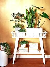 home plants decor decorations decoration house interior artificial