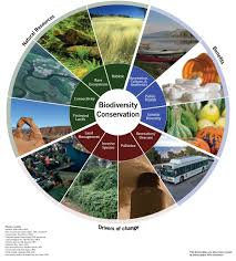 enviroatlas benefit category biodiversity conservation  eco wheel for biodiversity conservation benefit category sections are natural resources benefits