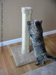 67 best Cat scratch post images on Pinterest