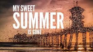 Dirty Heads - My <b>Sweet Summer</b> (Lyric Video) - YouTube