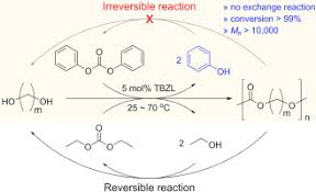 Aliphatic Conversion Chart Synthesis Of Aliphatic Polycarbonates By Irreversible