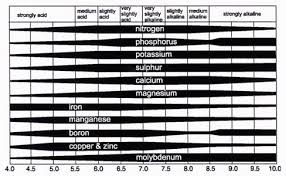All You Need To Know About Ph And Nutrient Availability