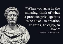 Marcus Aurelius Quotes Mesmerizing Is This Quote Actually From Meditations Books