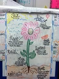Plants Lessons Tes Teach