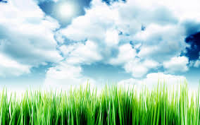 grass and sky backgrounds. Delighful And Grass And Sky Backgrounds Computer Grass And Sky Pictures Desktop  Backgrounds 1440x900