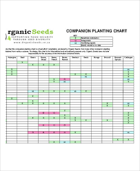Vegetable Companion Planting Charts Companion Planting Chart 9 Free Excel Pdf Documents