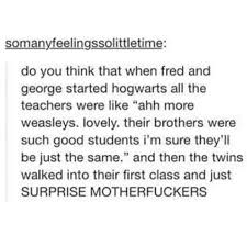37 Times Tumblr Made You Rethink Everything About Harry Potter