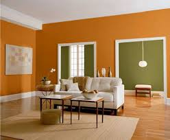 orange and green wall color for contemporary living room ideas using two colors bination with white couch