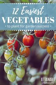 easy vegetables to grow almost fail proof vegetable garden for beginners