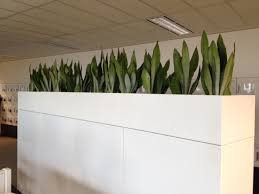 office planter boxes. custom built planter box office boxes