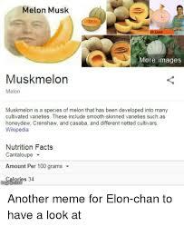 Cantaloupe Nutrition Chart Melon Musk More Images Muskmelon Melon Muskmelon Is A