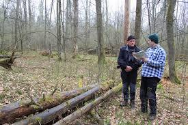 Эксперт Совета Европы считает план управления Беловежской пущей  Эксперт Совета Европы считает план управления Беловежской пущей достаточно честным и подходящим brest green info