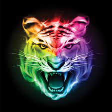 Colorful Tiger Wallpapers - Top Free ...