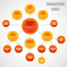 Organization Chart With Round Options Vector Premium Download