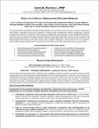 Management Summary Template Awesome Projectent Summary Example Report Construction Manager Resume