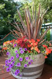 Garden Design Garden Design With Six Container Gardening Ideas Container Garden Ideas Photos