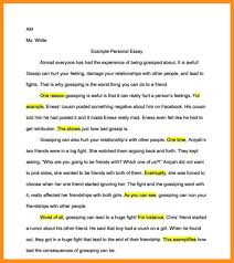 who am i essay ideas agenda example 7 who am i essay ideas