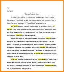 who am i essay ideas agenda example 7 who am i essay ideas