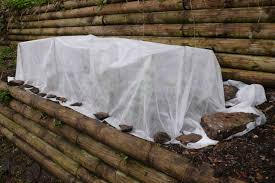 information on how to protect outdoor plants in winter