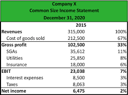 Profit And Loss Statement What Is A Common Size Income Statement Definition