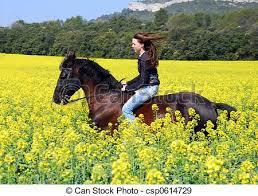 horses galloping in a field. Modren Galloping Galloping Horse  Csp0614729 For Horses Galloping In A Field L