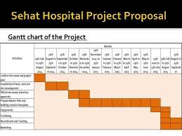 New Hospital Construction Gantt Chart