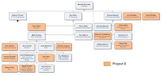Organizational Chart Designs Creating A Matrix Organization Chart With Orgchart Orgchart