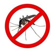 Резултат слика за Третман сузбијања  одраслих комараца