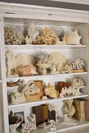 Seashell Collection Display Because One Can Never Have