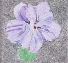 example of purple hibiscus essay purple hibiscus essay theme homework please